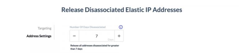 Release Disassociated Elastic IPs